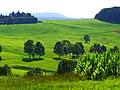 Green - panoramio (48).jpg