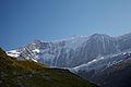 Grindelwald2 dm.jpg