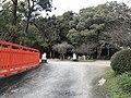 Guardian lions in Kashii Shrine 3.jpg