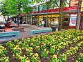 Hämeenlinna city center.JPG
