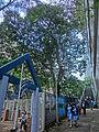 HK 大坑 Tai Hang 浣紗街 Wun Sha Street Children Playground outside stairs to Tai Hang Road Apr-2014 visitors.JPG
