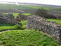Hadleigh Castle (5), outer walls - geograph.org.uk - 316227.jpg