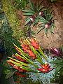 Haifa International Flower Exhibition P1130965.JPG