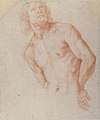 Half-Figure of a Male Nude with Arms behind Back MET 67.195.jpg