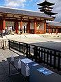 Hatsumōde in Yakushiji by countermeasures COVID-19 (sterilization) 01.jpg