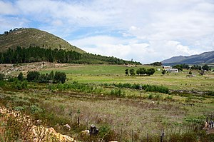 Herold, Western Cape - Image: Herold near George (8500157943)