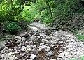 Hidden Falls - St Paul, MN - panoramio (40).jpg