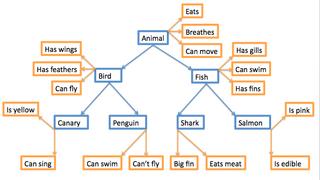 Semantic lexicon