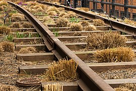 High Line, New York - 02.jpg