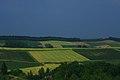 Hills like patch work - panoramio.jpg