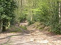Hindhead Common - geograph.org.uk - 1934.jpg