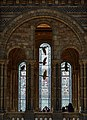 Hintze Hall Natural History Museum 5.jpg