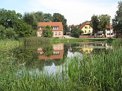 Village pond and some houses