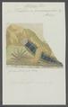 Holothuria quadrangularis - - Print - Iconographia Zoologica - Special Collections University of Amsterdam - UBAINV0274 106 01 0033.tif