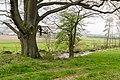 Horn-Bad Meinberg - 2015-04-25 - LIP-027 Wiembecketal (24).jpg