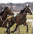 Horse Races 007 (8606928406).jpg