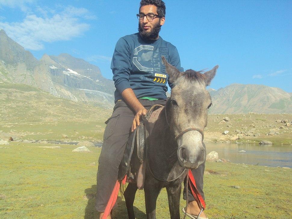 Horse riding near Gangbal Lake