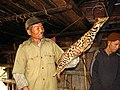 Hunting Leopard cat Prionailurus bengalensis IMG 0553.jpg