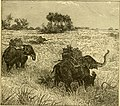 Hunting and trapping stories; a book for boys (1903) (14595779748).jpg
