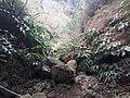 Ilha da Terceira (39038987714).jpg