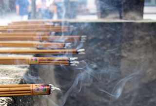 Incense aromatic biotic material which releases fragrant smoke when burned
