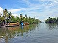 India-7703 - Flickr - archer10 (Dennis).jpg