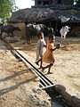 IndiaApril2009 030 - Flickr - Al Jazeera English.jpg