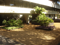 Internal Gardens of the Rectorate Buiding at University of Brasília (UnB).png