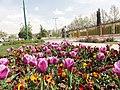 Iran, Tehran, Tehran Province, Iran - panoramio (5).jpg
