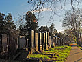 Israelitischer Friedhof Wien.jpg