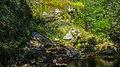 Itabira - State of Minas Gerais, Brazil - panoramio (95).jpg