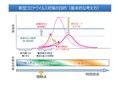 Japanese Ministry of Health, Labour, and Welfare and Objective of Novel Coronavirus Countermeasure.pdf