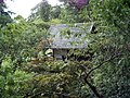 Japanese gardens - geograph.org.uk - 413103.jpg