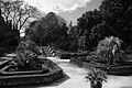 Jardin des plantes VIII.jpg