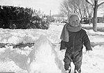 Jeb Bush in February 1955 (2839).jpg