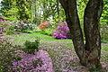 Jenkins Arboretum - DSC00687.JPG
