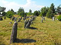 Jewish cemeteries in Pastavy 1e.jpg