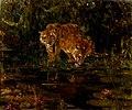 John Macallan Swan - Tigers drinking.jpg