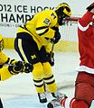 Jon Merrill Michigan vs Cornell (1).jpg