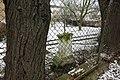 Kříž v zahradě domu na západním okraji Obrnic (Q78790359) 02.jpg