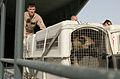 KC-130J flights DVIDS85316.jpg