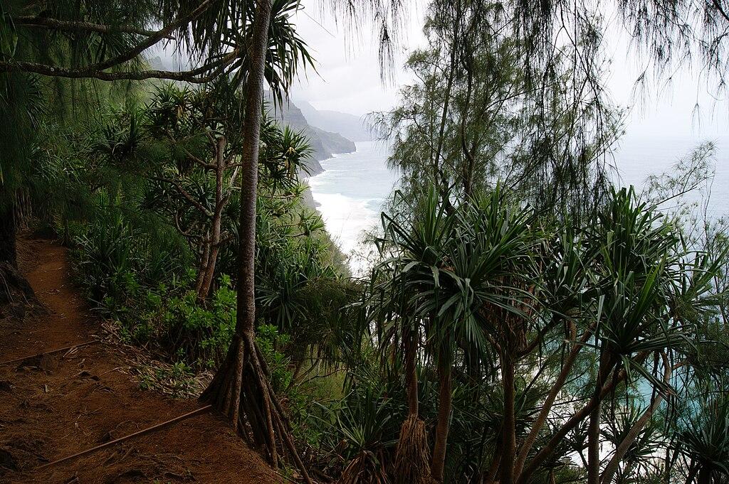 Kalalau trail 2011 4