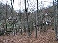 Karlštejn, chaty pod Haknovou, z protějšího kopce.jpg