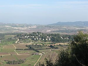 Sasa, Israel - Image: Kibbutz sasa