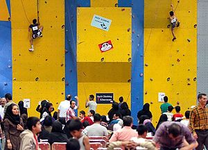 Climbing competition - Kids speed climbers in Mashhad