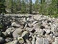 Klapperstensfält vid Bergsjön, Örnsköldsvik.jpg