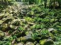 Kleines Felsenmeer im Geo-Naturpark Bergstrasse Odenwald.jpg