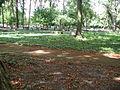 Koeln-Geusenfriedhof-002.JPG