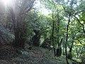 Kostanjica, Montenegro - panoramio (21).jpg