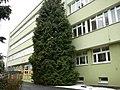 Krapkowice - panoramio (1).jpg
